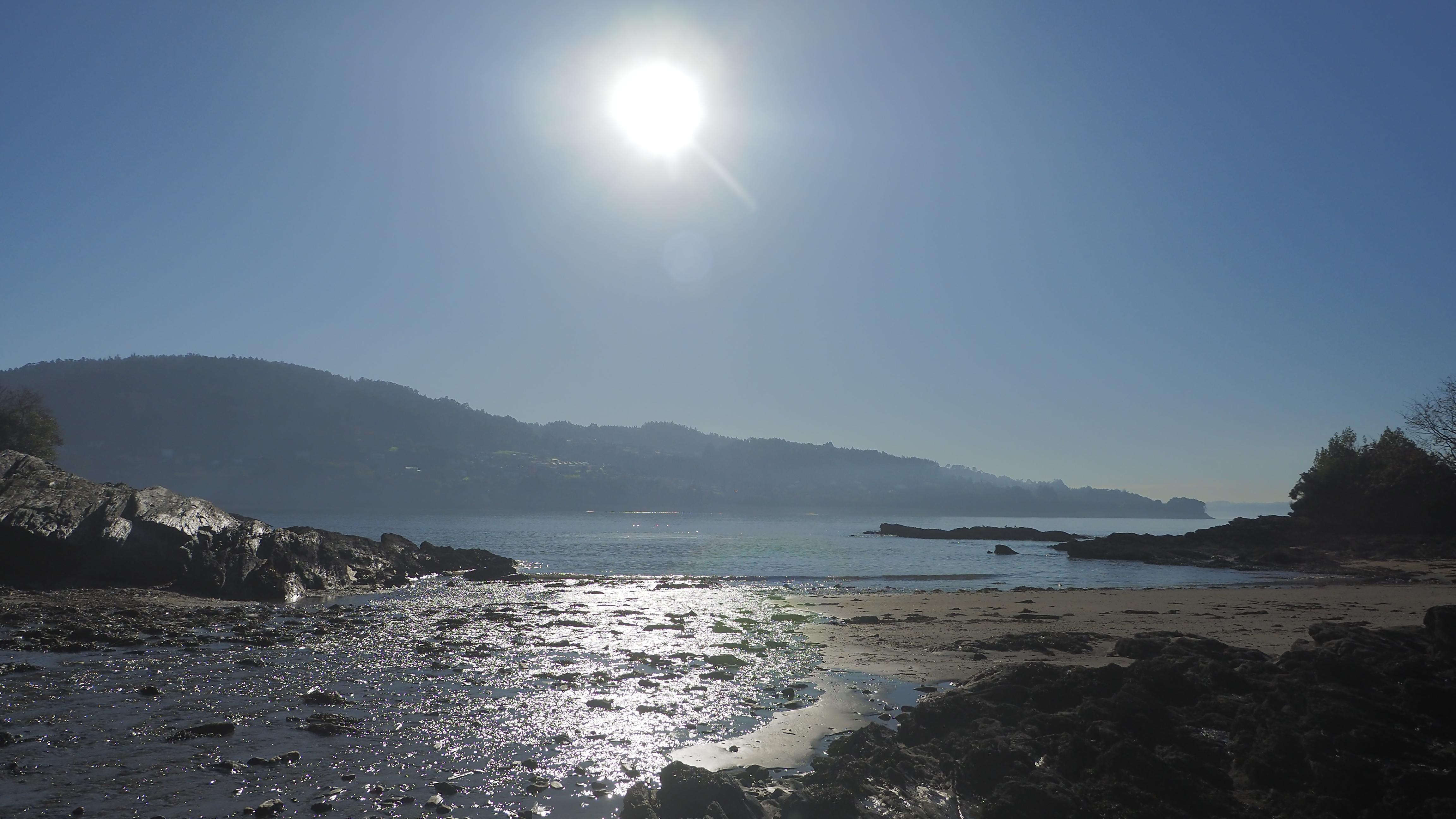 Fene Mar Vivo Plus